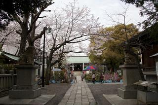 歴史の古い植木市